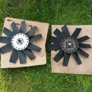rear of fans