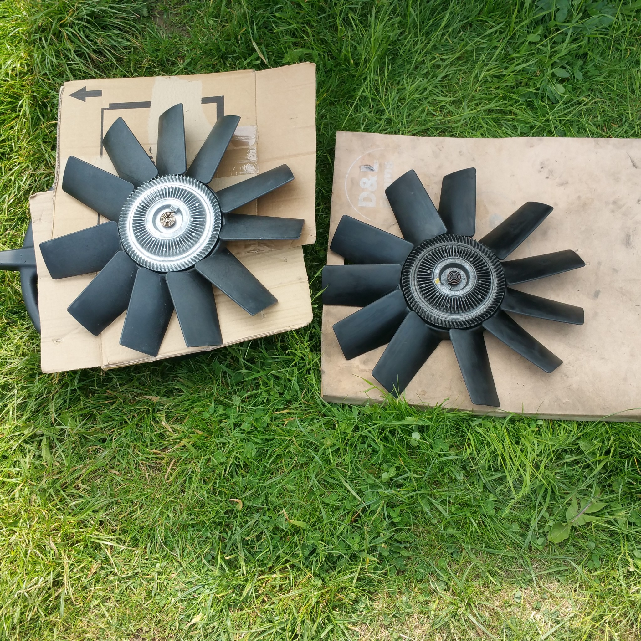 old fans and new